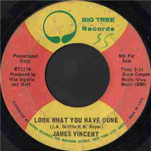 James Vincent - Look What You Have Done download